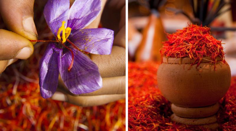 世界最頂級香料-「紅金」番紅花