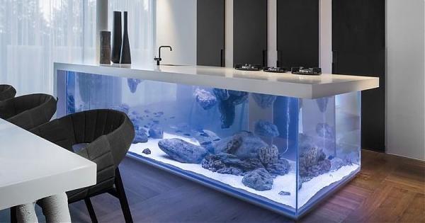 盘点世界豪宅的奢华鱼缸设计