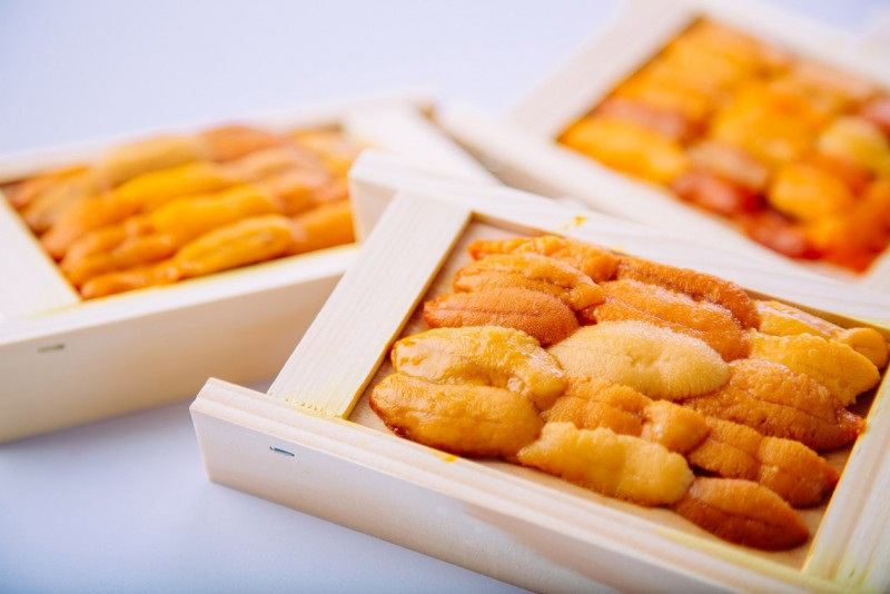 海膽怎麼挑? 世界各國海膽料理大不同! 那些關於海膽的冷知識
