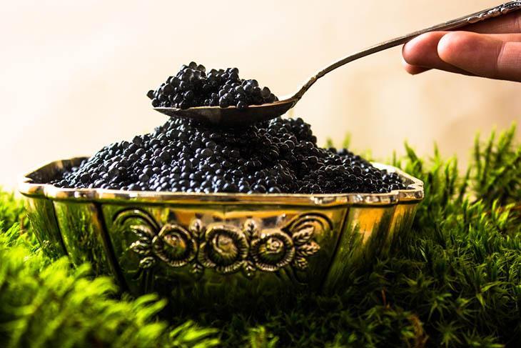 有關魚子醬(Caviar)的6個冷知識