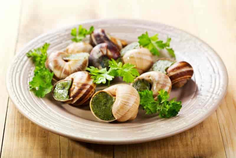 吃过正宗的「法国蜗牛」料理吗?