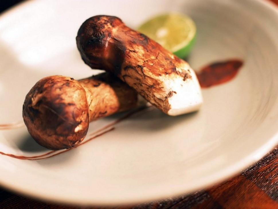 秋季食材 頂級松茸食法大全